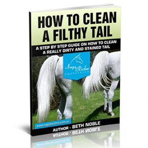 CleanAFilthyTail